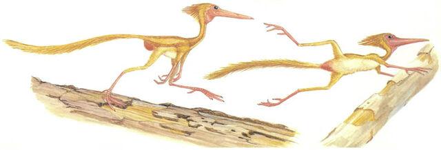 File:New Dinosaurs - Footle.jpg