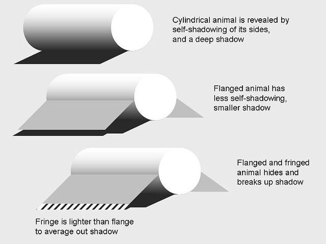 File:Counteracting shadow.jpg
