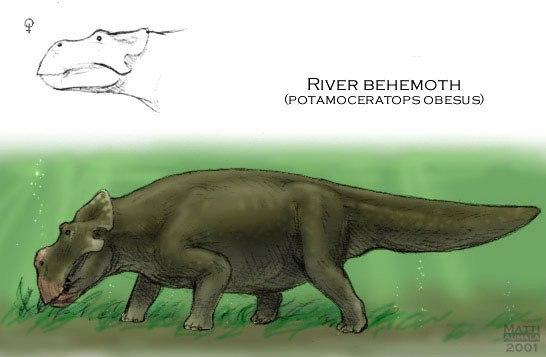 Hippoceratops