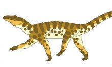 Neocene land caiman by pristichampsus