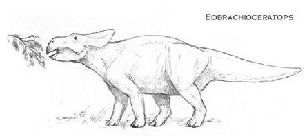 Eobrachioceratops