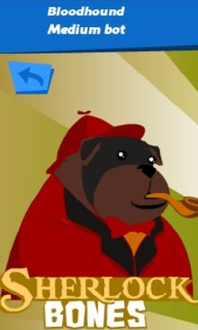 SB Bloodhound