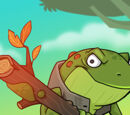 Frog Scout