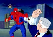600full-spider--man--the-animated-series-photo