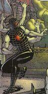 Spider-Man (Earth-5113) 0001