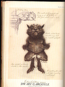Dwarf Gargoyle