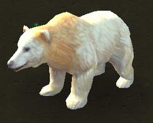 Kermode Bear.png