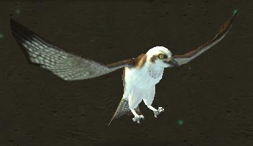 Plik:Osprey.png