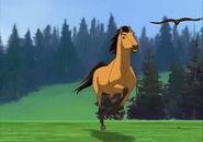 Spirit stallion of the cimarron 2