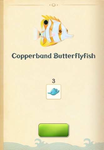 File:Copperband Butterflyfish§Aquapedia.png