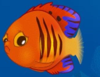 File:Scared Angelfish.jpg