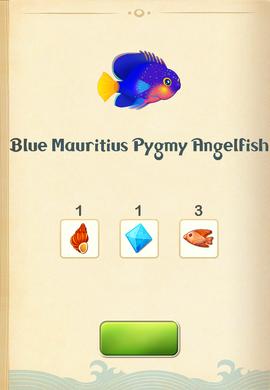 Blue Mauritius Pygmy Angelfish§Aquapedia