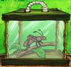 Sandy's Cricket