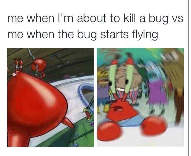 Image Confused Krabs Meme Jpeg Encyclopedia