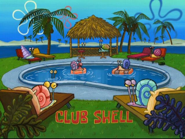 File:Club Shell.jpg