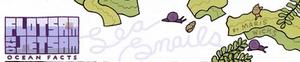 Flotsam Jetsam (18)