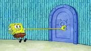 Patrick's Coupon 173