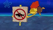 Sharks vs. Pods 077