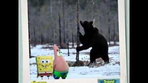 SpongeBob and Patrick Travel the World - RUSSIA Paramount Pictures International