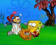 Spongebob Sandy Picnic Mustard