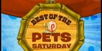 Best of the Pets Saturday