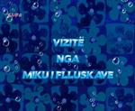 S8E15b title card (Albanian)