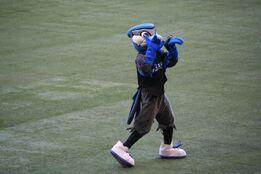 Ace Blue Jays