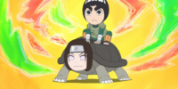 Summoning Technique (Rock Lee)