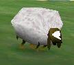 File:Sheepfodder.jpg