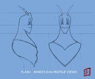 A SparxsDad Flash Profile