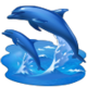 Contract Resettling the Dolphins