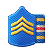 File:Badge Military Level 8.png