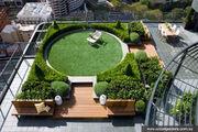 RealWorld Garden Meadow