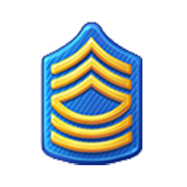 File:Badge Military Level 13.png