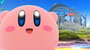 Kirby1