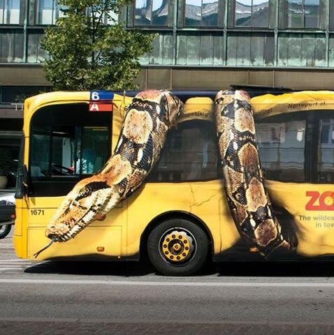 File:Copenhagen-Zoo-Snake-on-Bus-FINAL.jpg