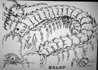 CentipedeMonsterSettei