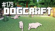 Dogcraft179