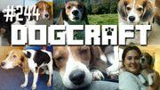Dogcraft 244