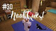 Noobquest30
