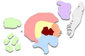 Miniatuurafbeelding voor de versie van 4 jun 2008 om 14:29