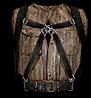 File:Leatherjacket.jpg