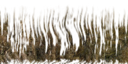 Artifact liana2