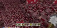 Journey Into The Nether