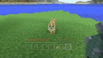 Minecraft Xbox - Kitty Cat 145-1