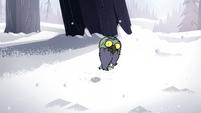 S2E2 Ludo watches giant spider crawl away