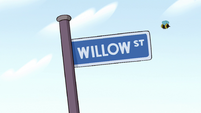 S2E6 Willow Street sign and a bee