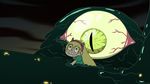 S3E7 Star Butterfly swimming the other way