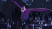 S2E27 Bald eagle flying with spider in her talons