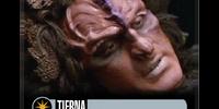 Tierna (Cost 3)